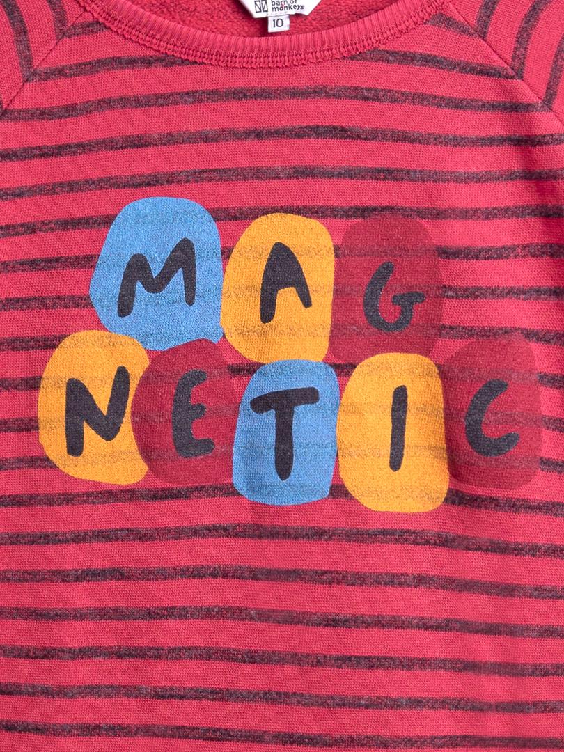 MAGNETIC DRESS